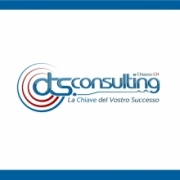 dts.consulting